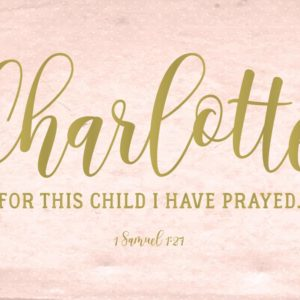 For this child I have prayed - 1 Samuel 1:27