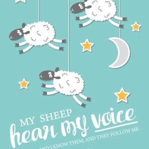 My sheep hear my voice - John 10:27