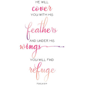 Under His Wings – Psalm 91:4