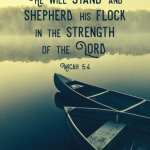 He will stand and shepherd His flock - Micah 5:4
