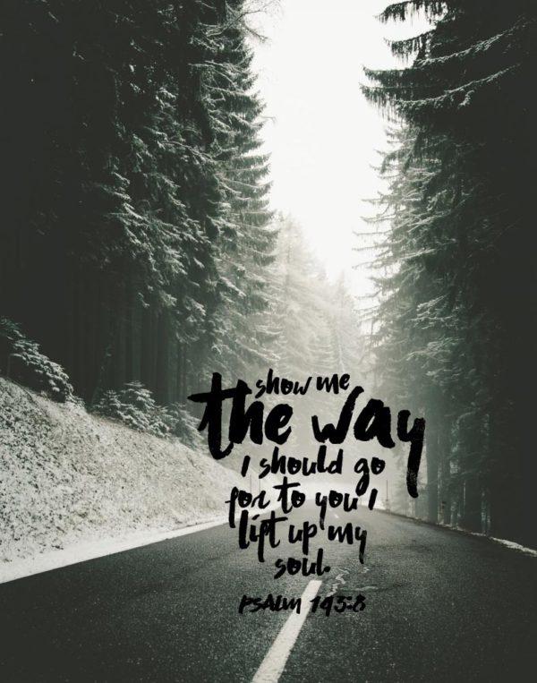 Show me the way I should go - Psalm 143:8