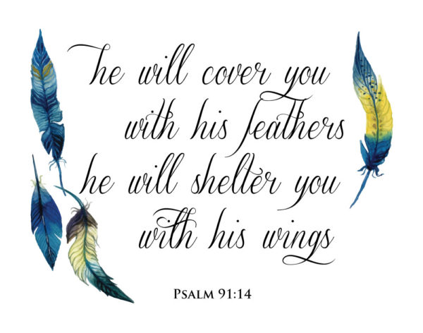 He will cover you with his feathers - Psalm 91:4